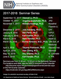 2017-2018 NIDCD Seminar Series promotional poster. Click to Download a PDF.