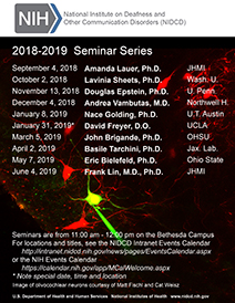 2018-2019 NIDCD Seminar Series promotional poster. Click to Download a PDF.