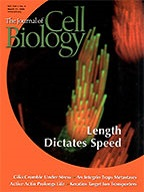 Current Opinion in Neurobiology cover Mar.2004