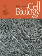 The Journal of Molecular Biology cover