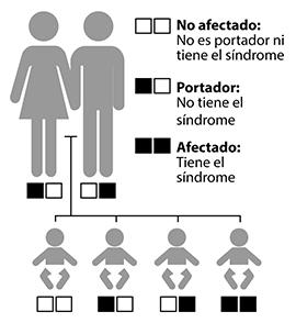 Por lo general, los portadores con un gen mutante de Usher tienen la audición, el equilibrio y la visión normales. A menudo, los portadores no saben que tienen un gen mutante.